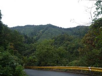 P1060859日置側から大笹山.JPG