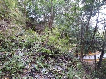 P1060867荒れた山道.JPG
