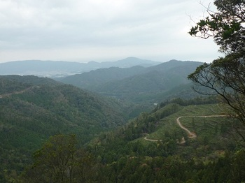 P1060887伐採境からの展望.JPG