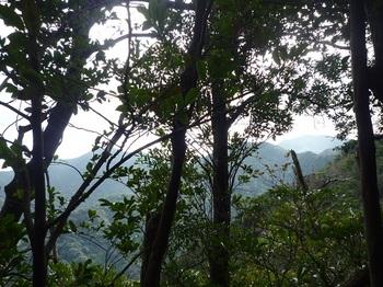 P1070160樹間に天井山方面.JPG