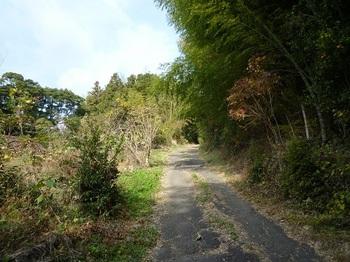 P1070269舗装林道.JPG
