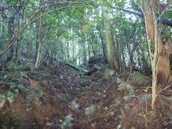 P1070337上部の山道.JPG