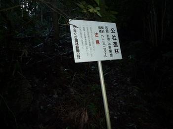 P1070338公社造林.JPG