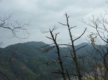 P1070425 展望(西畑山、日尾山・千代ヶ岳).JPG