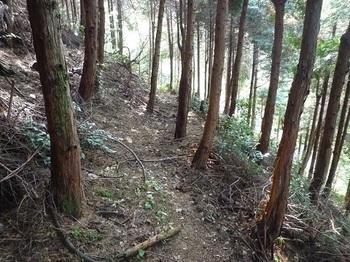 P1070468山道.JPG
