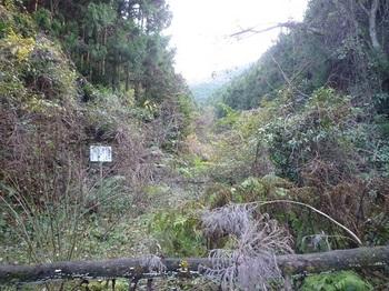 P1070480林道出合いから荒れ谷(逆方向).JPG