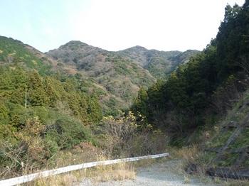 P1070486 ダム公園から503m峰.JPG