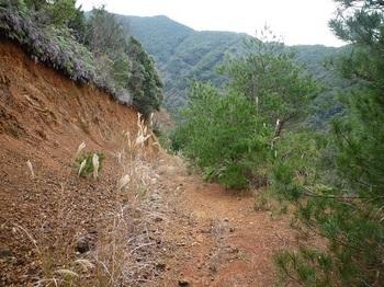 P1070609荒れ林道.JPG