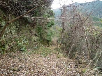 P1070611荒れ林道.JPG