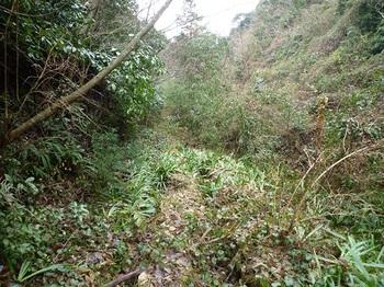 P1070616荒れ林道.JPG