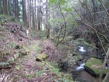 P1070628渓流沿いの遊歩道.JPG