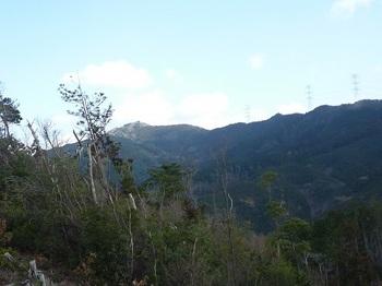 P1070804伐採地から桂木山.JPG