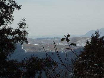 P1070866植林の切れ間から秋吉台.JPG
