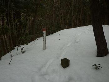 P1070887峠方向の図根三角点.JPG