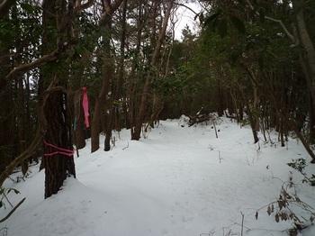 P1070895早栗林道コース分岐.JPG