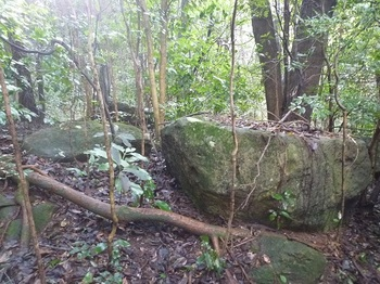 P1080062岩C.JPG