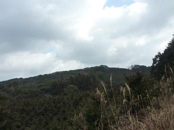 P1080098林道から岡山南峰.JPG