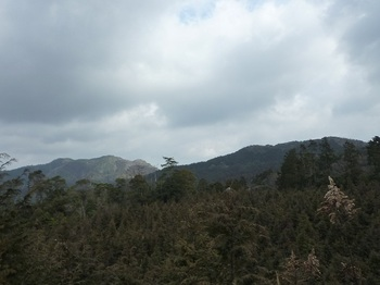 P1080099林道から日の岳・岡山北峰.JPG