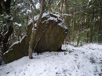 P1080188異形の岩.JPG