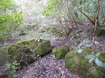 P1080248 R-5岩群S.JPG
