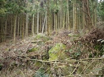 P1080314 岩群の谷(上部).JPG