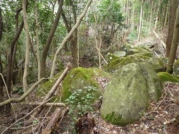 P1080318岩群の谷(下方).JPG
