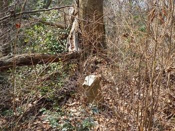 P1080396村有林界石柱.JPG