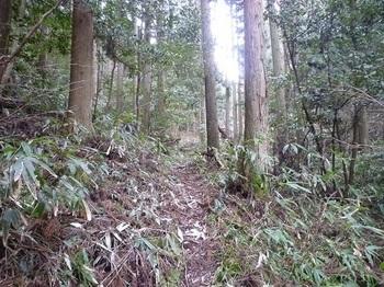 P1080543ササ刈りの山道.JPG