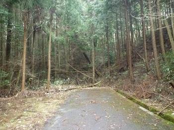 P1080593舗装林道終点.JPG