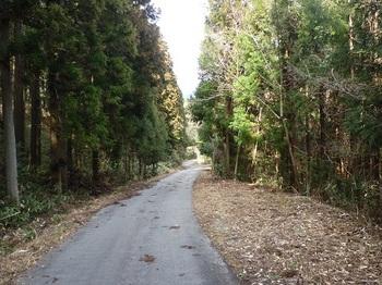 P1080597舗装林道.JPG
