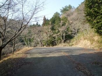 P1080615林道終点・駐車地.JPG