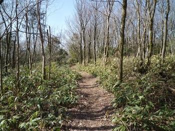 P1080655西方向の登山道.JPG