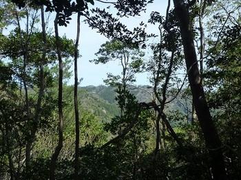 P1080984北面の樹間展望.JPG