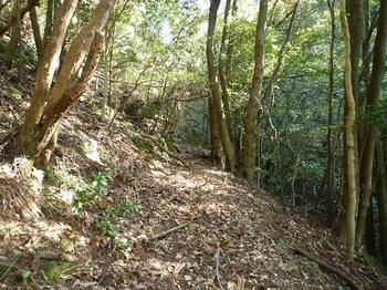 P1090121滝上部の巻き道.JPG