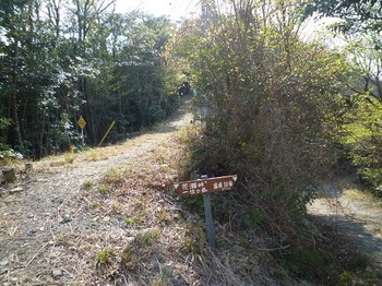 P1090209道標・林道からの取り付き.JPG