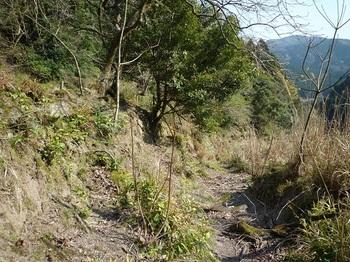 P1090221下段の山道へ下りる.JPG