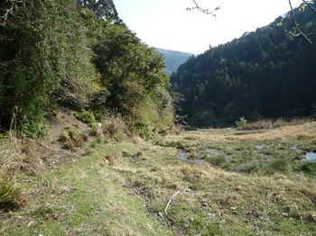 P1090222耕作地沿いの山道.JPG