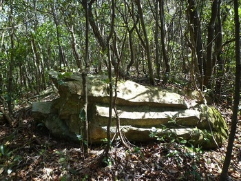 P1090274岩)材木石の原石?.JPG