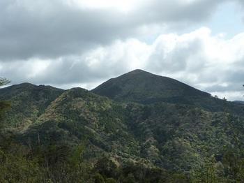 P1090360作業道から一位ヶ岳遠望.JPG