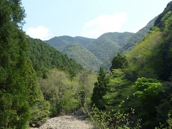 P1090491天井ヶ岳.JPG
