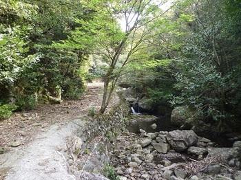 P1090645渓流沿いの林道.JPG