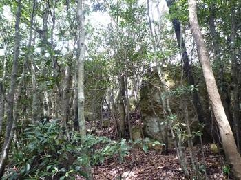 P1090987展望岩(南側から).JPG
