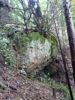 P1100004大岩.JPG