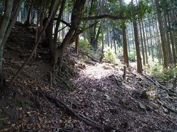 P1100041左からの山道と出会う.JPG