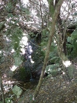 P1100089ミニ(糸)滝.JPG