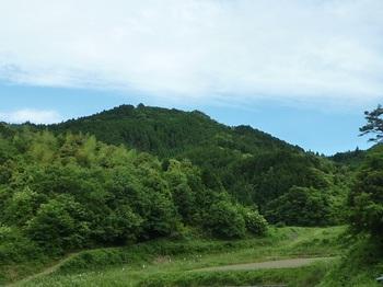 P1100286西麓から山頂方向.JPG