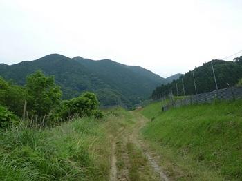 P1100383林道・捻松山.JPG