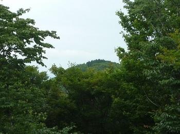 P1100435堂ヶ岳.JPG