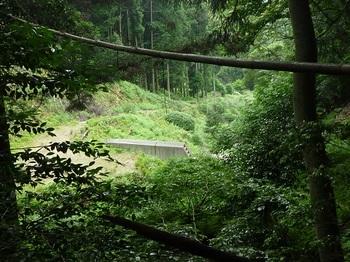P1100445堰堤が見える.JPG