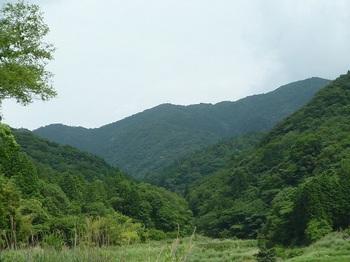 P1100459とくせん山・堂ヶ岳の稜線.JPG